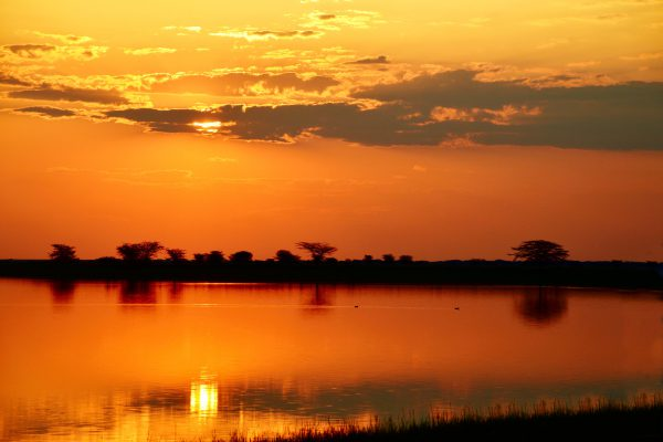 botswana – sunset drive – DSC_8317