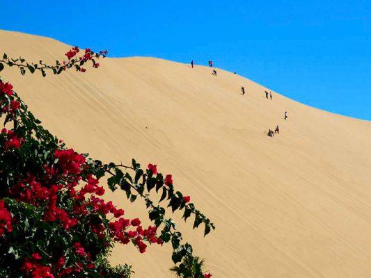 dune seven – namibia – IMG_1042j