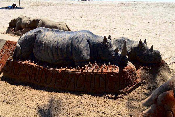 rhino – sand castle – DSC_2531j