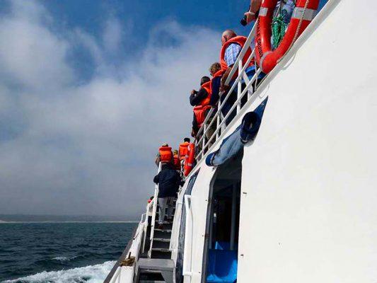 whale wathing – cruise – hermanus – IMG_2609j