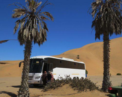 dune / duin 7 – namibia – IMG_1058