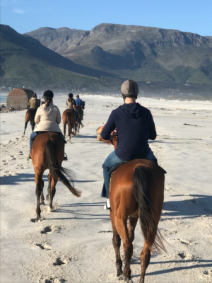 horse riders on beach