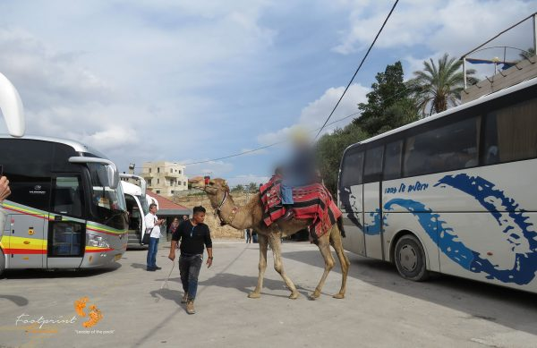 camel ride – Israel – IMG_6395