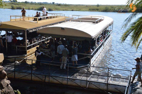 game viewing cruise – botswana – DSC_8869