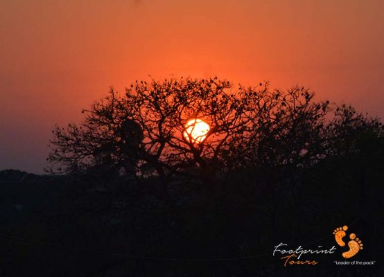 bushveld sunset – DSC_7115