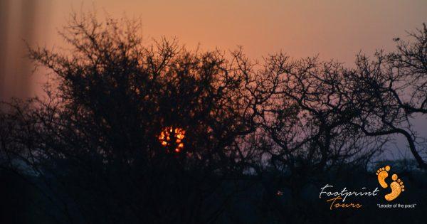 bushveld sunset – DSC_7459