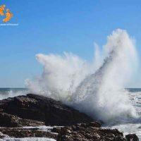 extraordinary wave