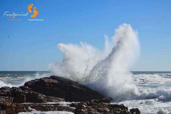 extraordinary wave – DSC_1367