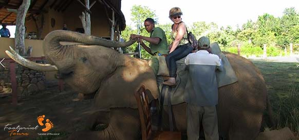 getting on back of elephant for ride – MIV 235