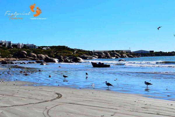 west coast – DSC_1566