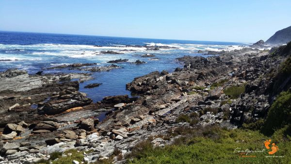 3. stormsriver – garden route – 142156