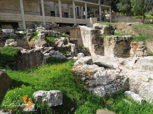 Israel – IMG_6843
