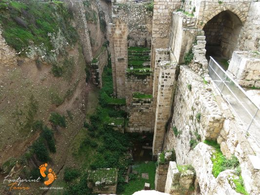 Jerusalem to Pool of Bethesda – IMG_6623