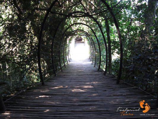 garden route – IMG_7484