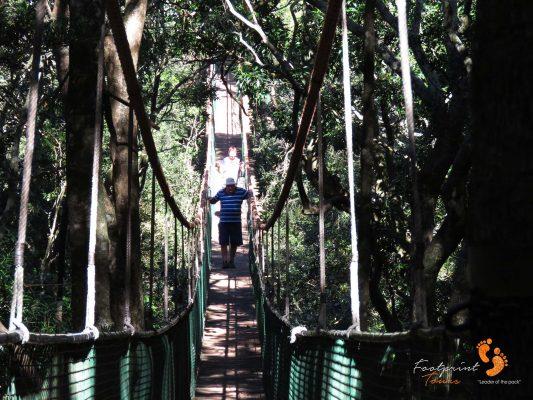 suspension bridge – IMG_7448