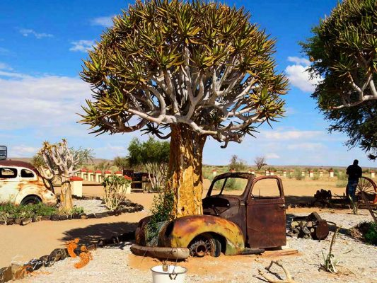 namibia – quiver tree surprise – IMG_0332