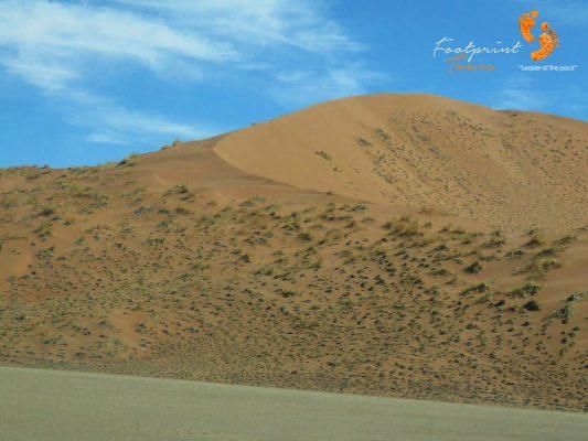 sand dune – namibia – IMG_0739