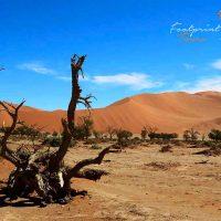 sossusvlei dunes – namibia – IMG_0766