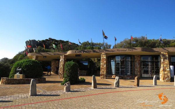 cape point – IMG_2488