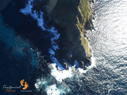 cape point – peninsula – DSC03795