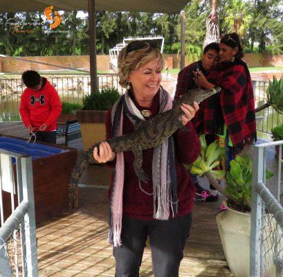 crocodile farm – winelands – IMG_2565