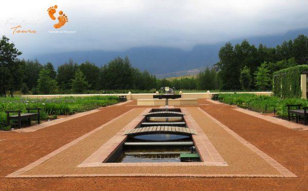 winelands – IMG_4580