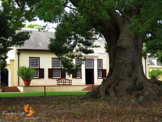 winelands homestead – IMG_4625