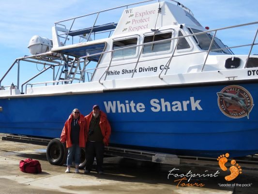 shark cage divers – IMG_8038